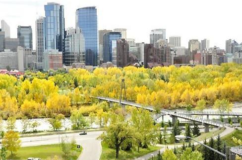 Sắc thu ở thành phố Calgary- Alberta